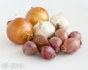 Garlic, onions, and shallots