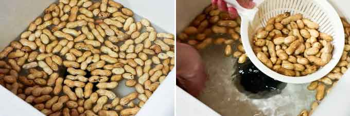 Pressure Cooker Boiled Peanuts-8